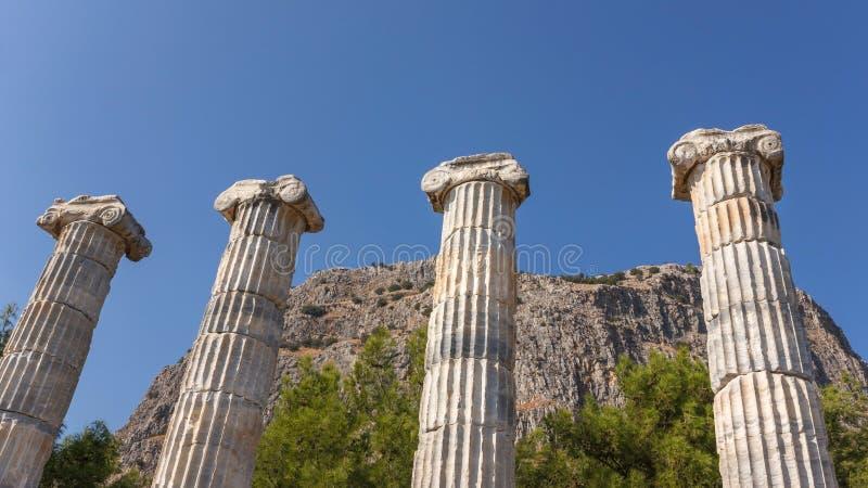 Colonnes dans le temple d'Athéna photographie stock
