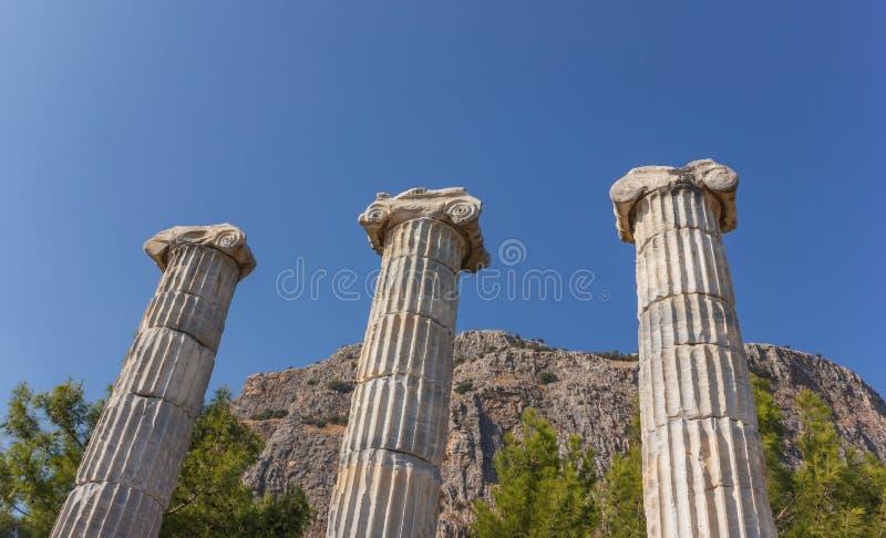 Colonnes de temple Athéna image stock