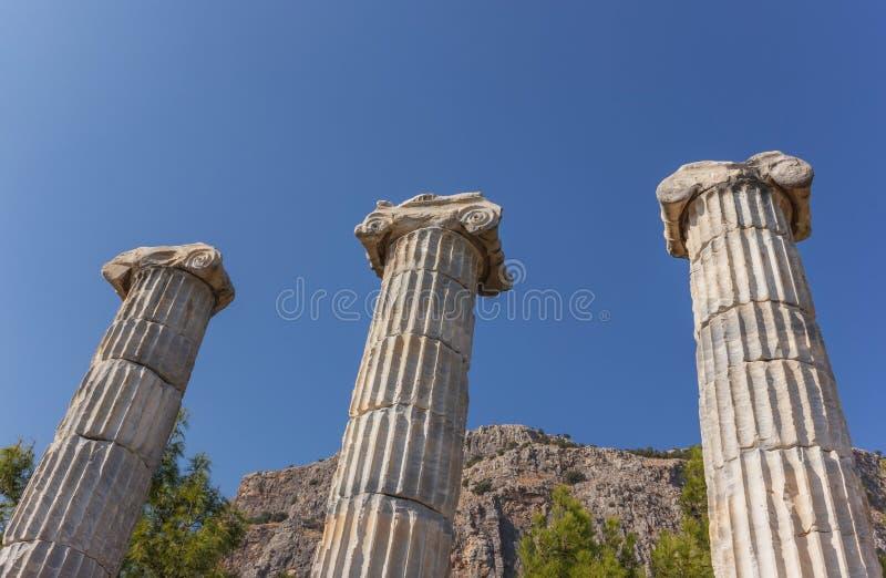 Colonnes de temple d'Athéna photo stock