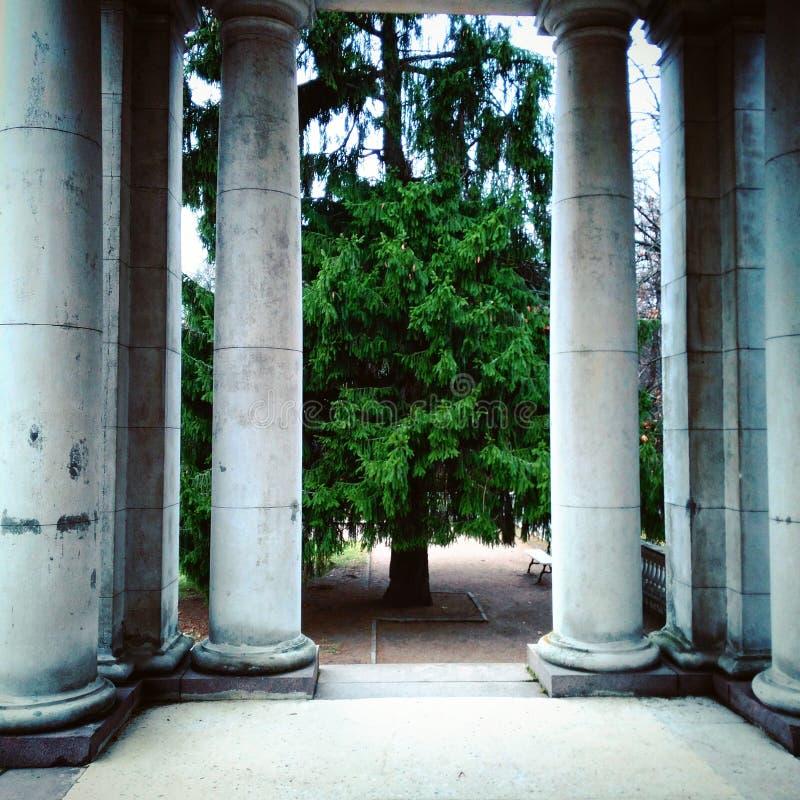 Colonnes qui déclenchent au parc images libres de droits
