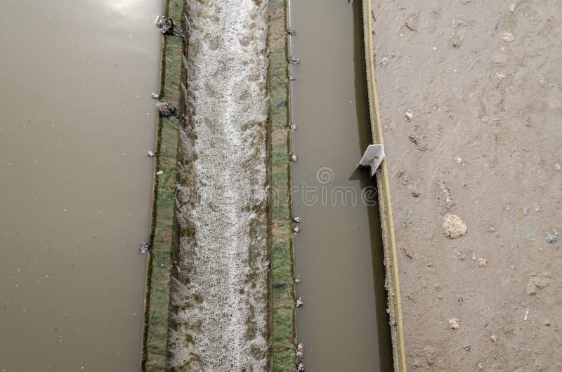 Colono radial del primer en la invitación del agua de las aguas residuales imágenes de archivo libres de regalías