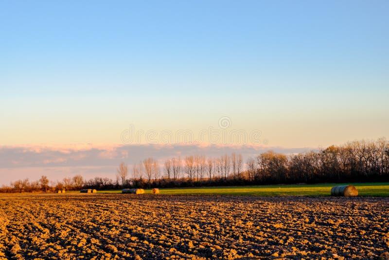Coloque com as polias cercadas perto por árvores pela cidade húngara Hegyko Hungria no outono foto de stock royalty free