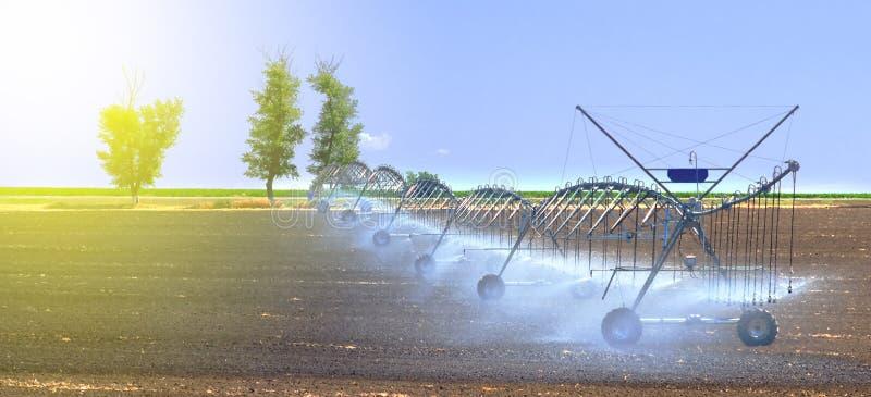 Coloque el sistema de irrigación para un mejor crecimiento vegetal y fomente el cultivo y el crecimiento de cosechas agrícolas fotos de archivo libres de regalías