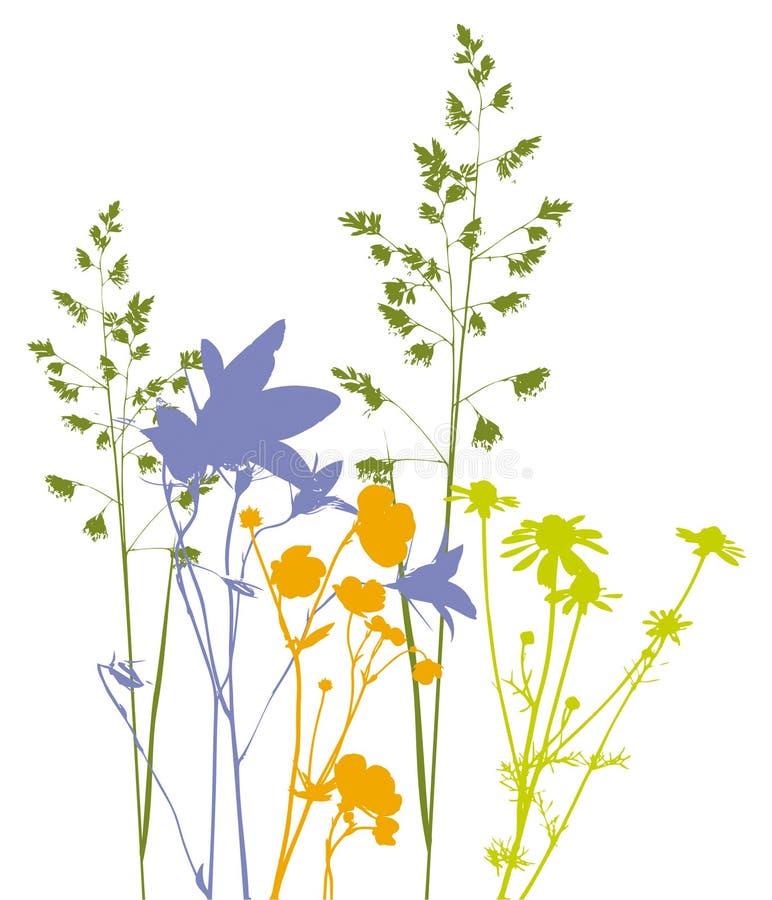 Coloque flores, ervas e plantas, vetor, seguido ilustração stock
