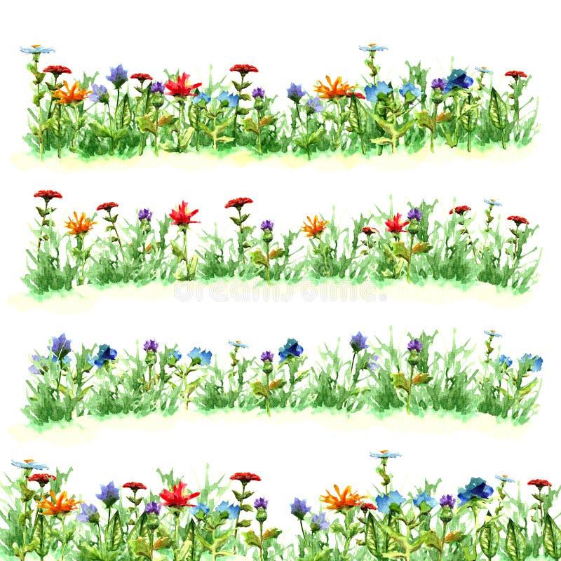 Coloque flores na grama verde do verão no verde roxo amarelo azul vermelho brilhante franco da pintura da aquarela da flor dos ob fotos de stock royalty free