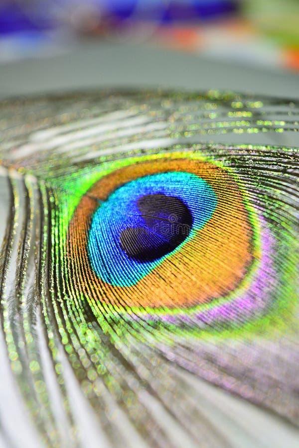 Coloré, image stock