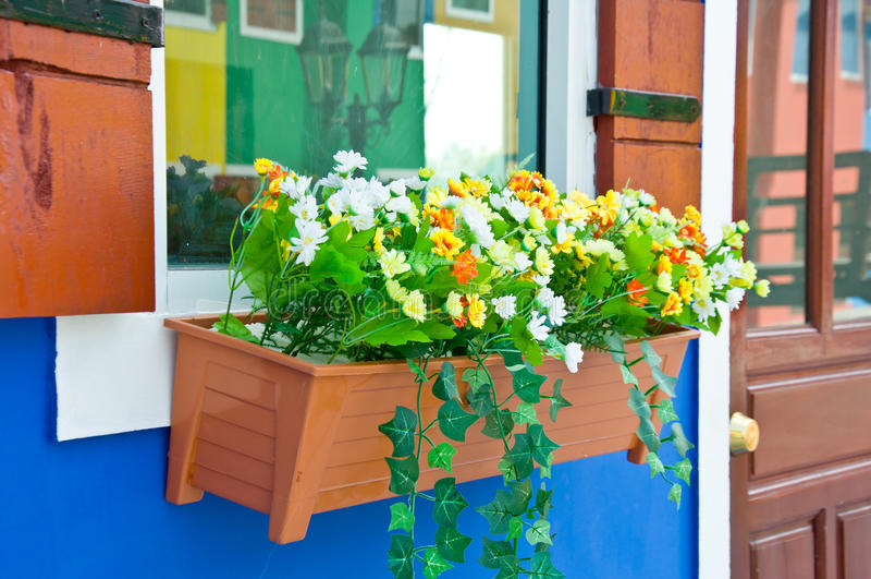 Coloré de la fleur sur la fenêtre photos stock