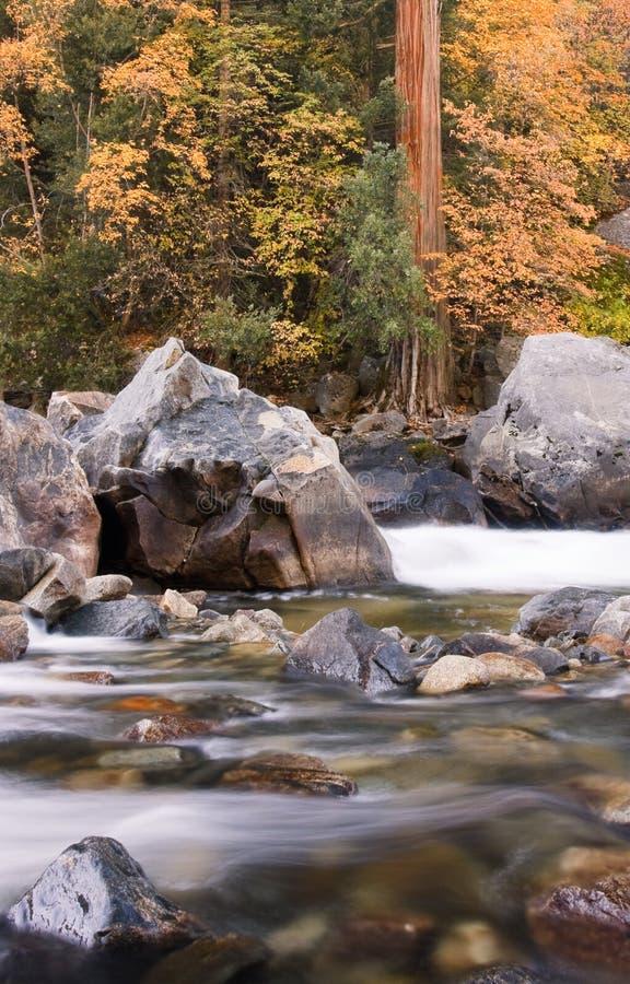 Color agradable de la caída en el río de Merced imágenes de archivo libres de regalías