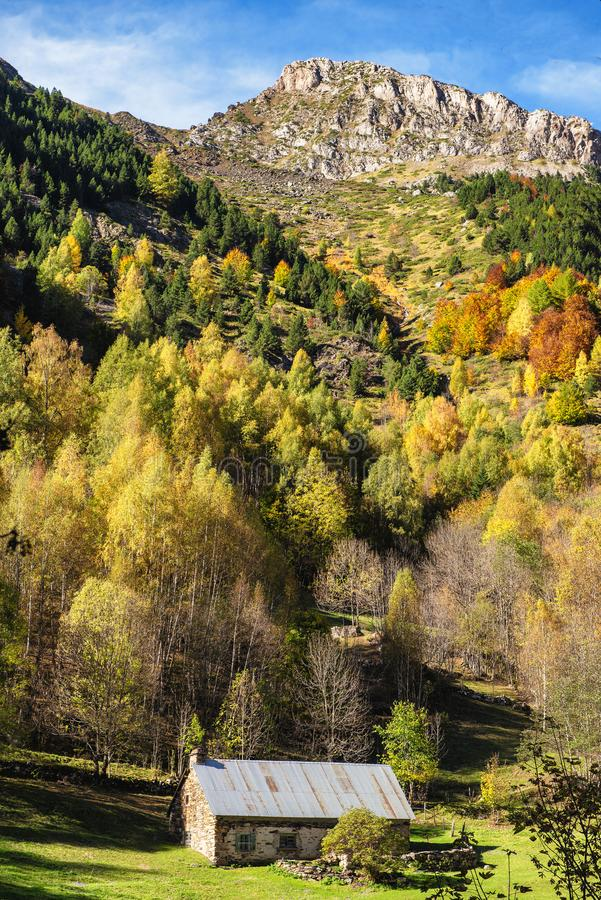 Color of autumn at the mountain with barn stock image
