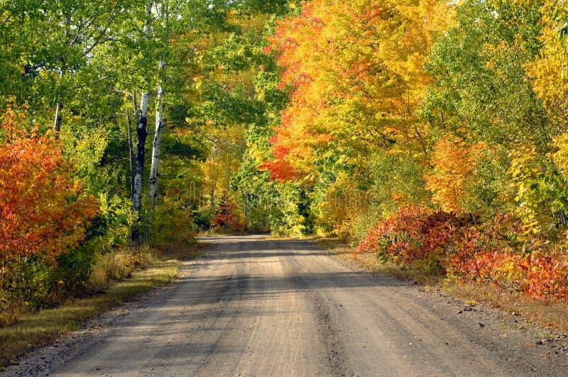 Color brillante en la península superior Michigan foto de archivo
