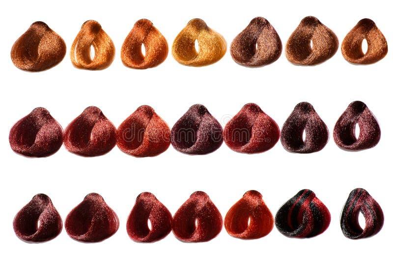 Salon Hair Color Charts Erkalnathandedecker