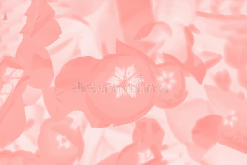 Color coral background with floral pattern. Abstract background stock image
