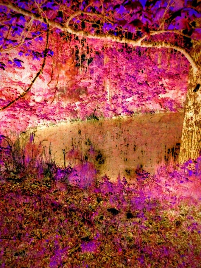 Color 1 de la abstracción imágenes de archivo libres de regalías