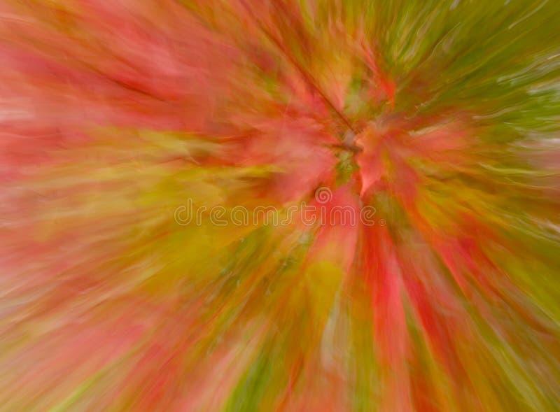 Color de la caída, enfocado stock de ilustración