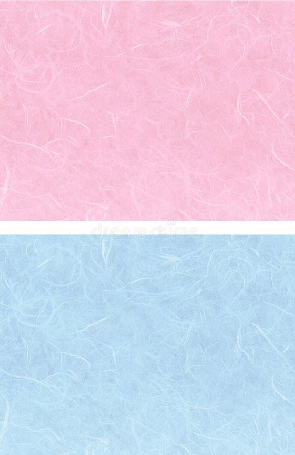 Color de rosa azul de 2 fondos ilustración del vector