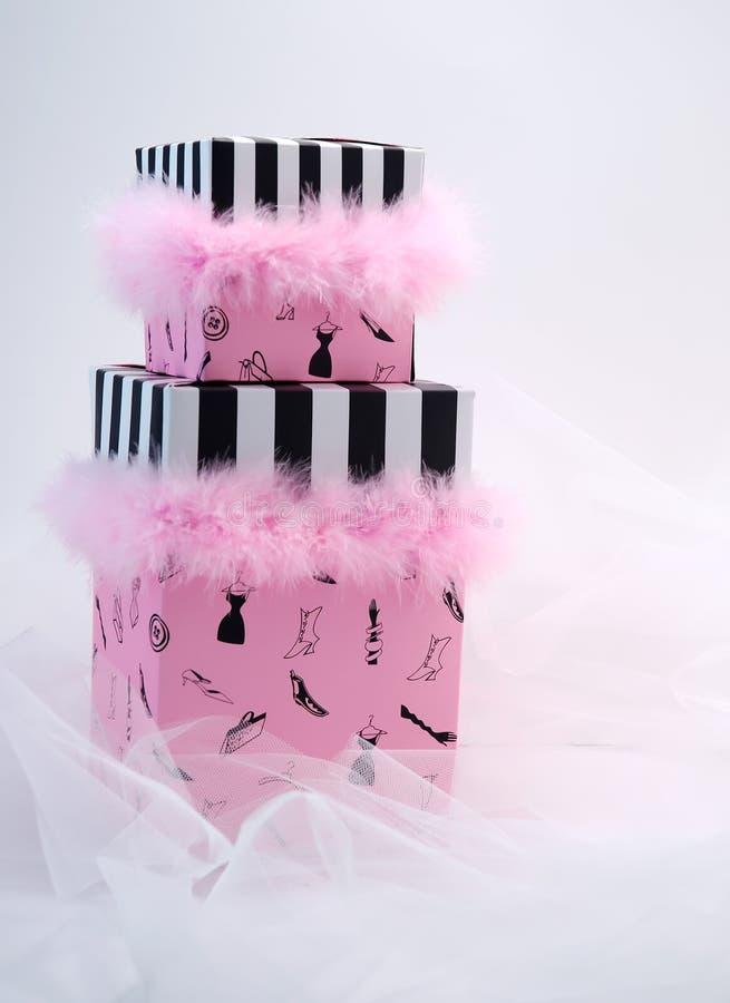 Color de rosa para las señoras fotos de archivo libres de regalías