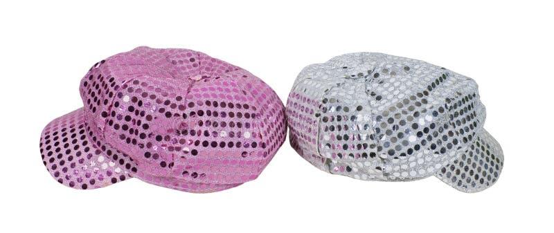 Color de rosa y casquillos de la chispa de la plata fotos de archivo libres de regalías