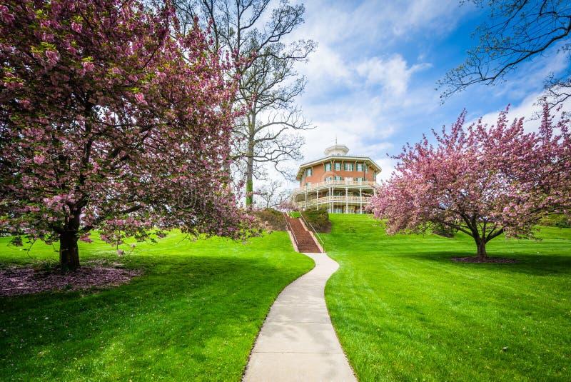 Color del edificio y de la primavera en Johns Hopkins en el soporte Washington, foto de archivo