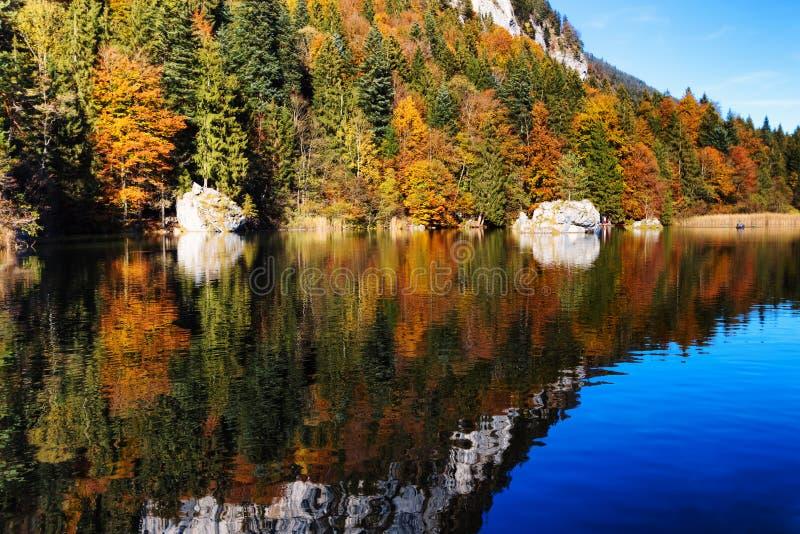 Color del follaje de otoño reflejado en un lago Austria, el Tyrol, Berglsteinersee imagen de archivo