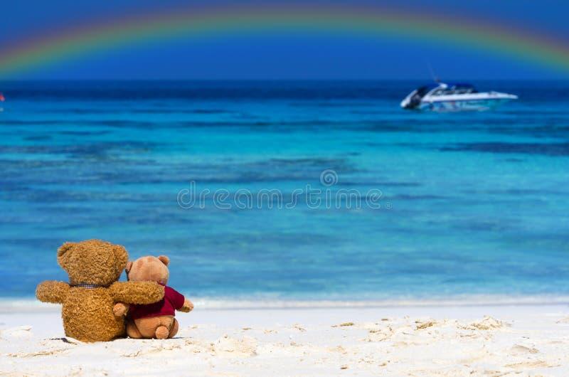 Color del marrón del OSO de PELUCHE dos que se sienta en la playa hermosa con r imágenes de archivo libres de regalías