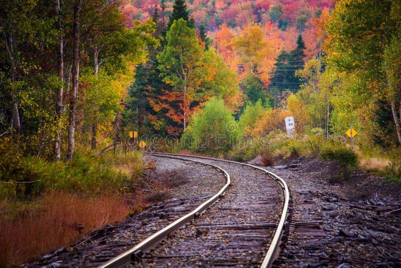 Color del otoño a lo largo de una pista de ferrocarril en la montaña blanca F nacional imagen de archivo libre de regalías