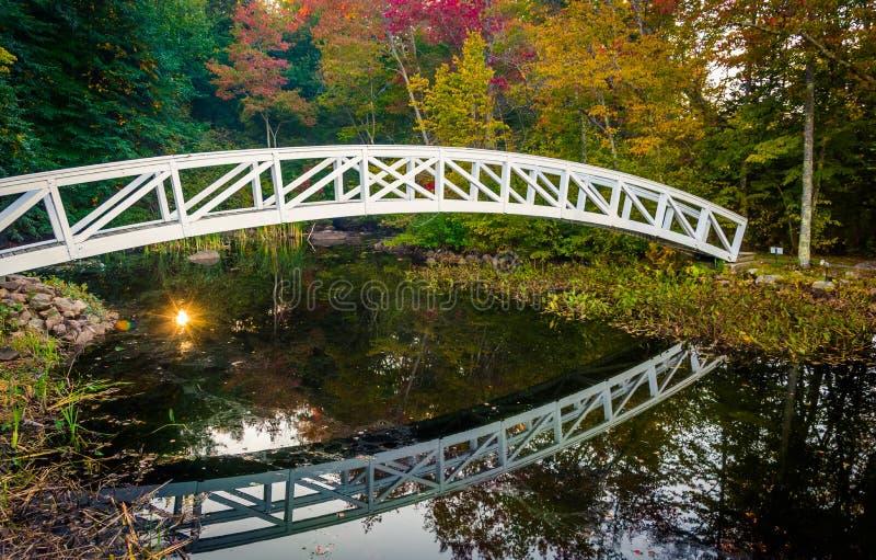 Color del otoño y puente que camina sobre una charca en Somesville, Maine fotos de archivo libres de regalías