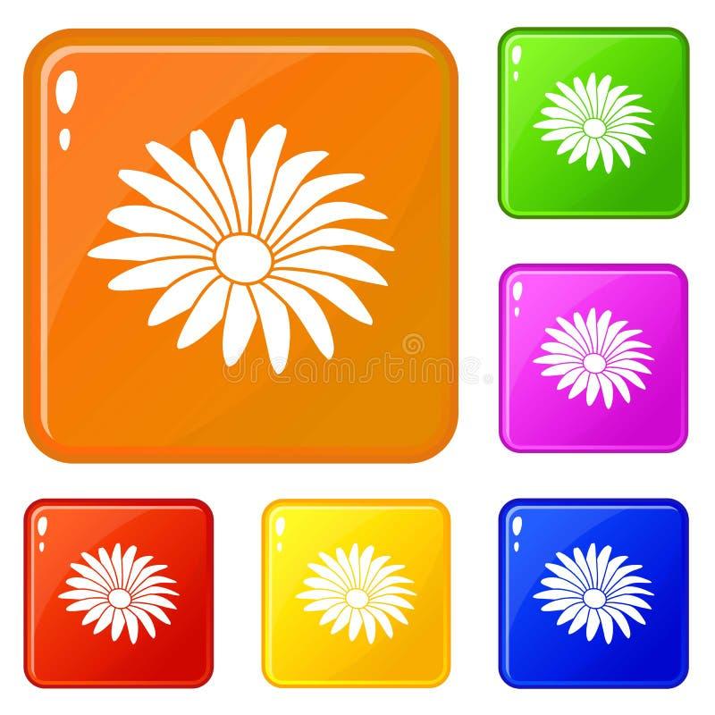 Color del vector del sistema de los iconos de la flor de Gerber stock de ilustración