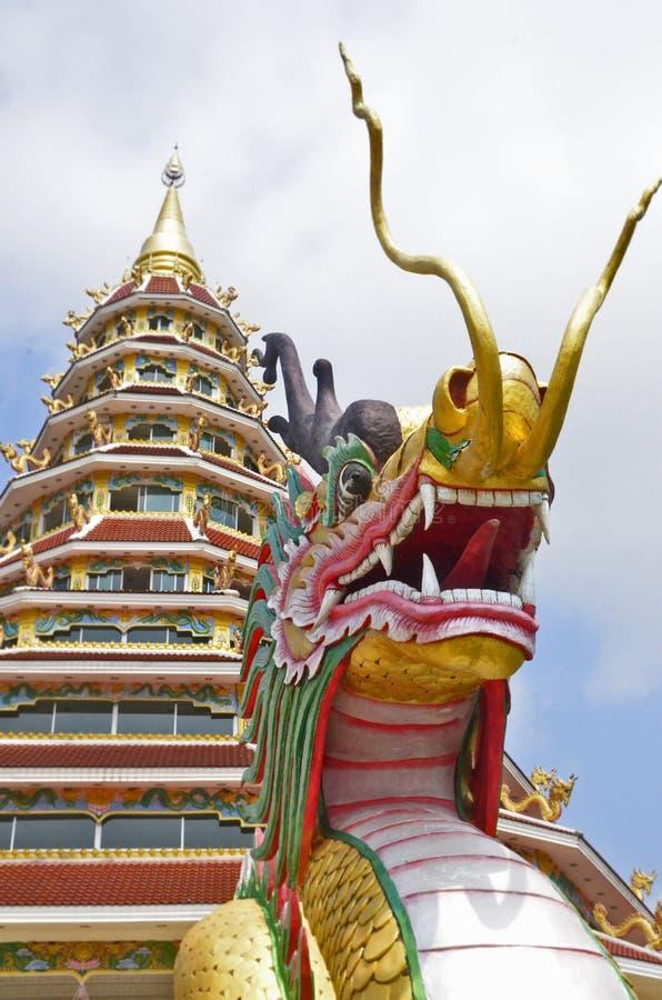Color dragon with pagoda royalty free stock image