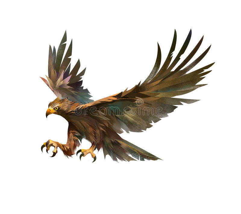 Color drawing of a bird attacking an eagle stock illustration