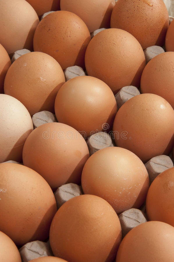 Color eggs royalty free stock images