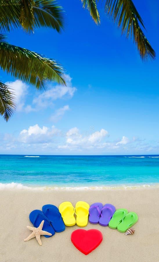 Download Color Flip Flops On Sandy Beach Stock Image - Image: 41464899