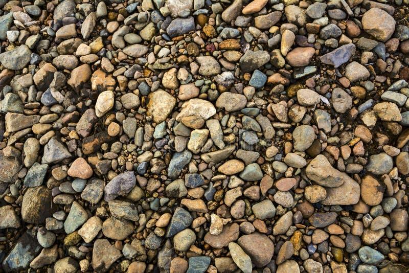 Color Gravel Texture. Stones texture. stock photo