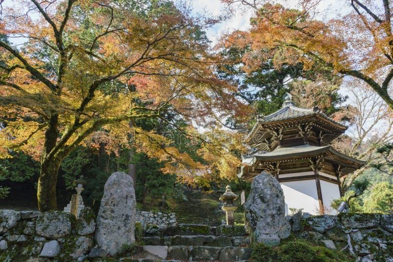 Color hermoso de la caída de Hiyoshi Taisha foto de archivo