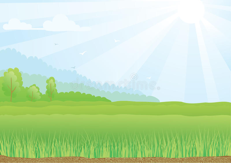 Download Illustration Of Green Field With Sunshine Rays And Stock Vector - Illustration: 30015188