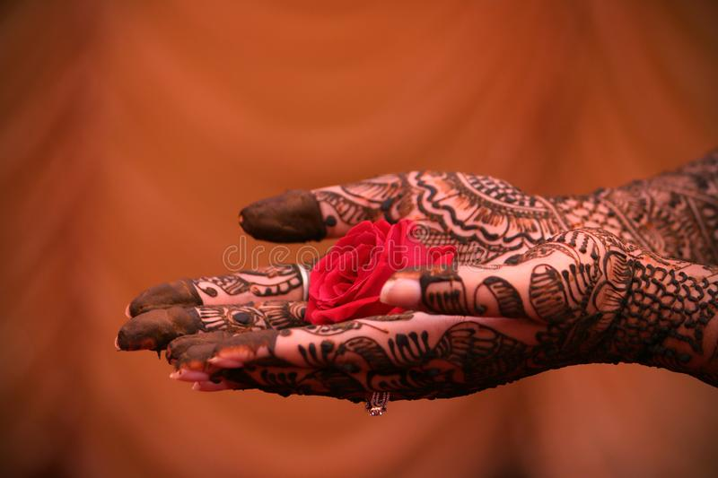 Mehndi Hands Powerpoint : The color of marriage mehndi stock photo image life
