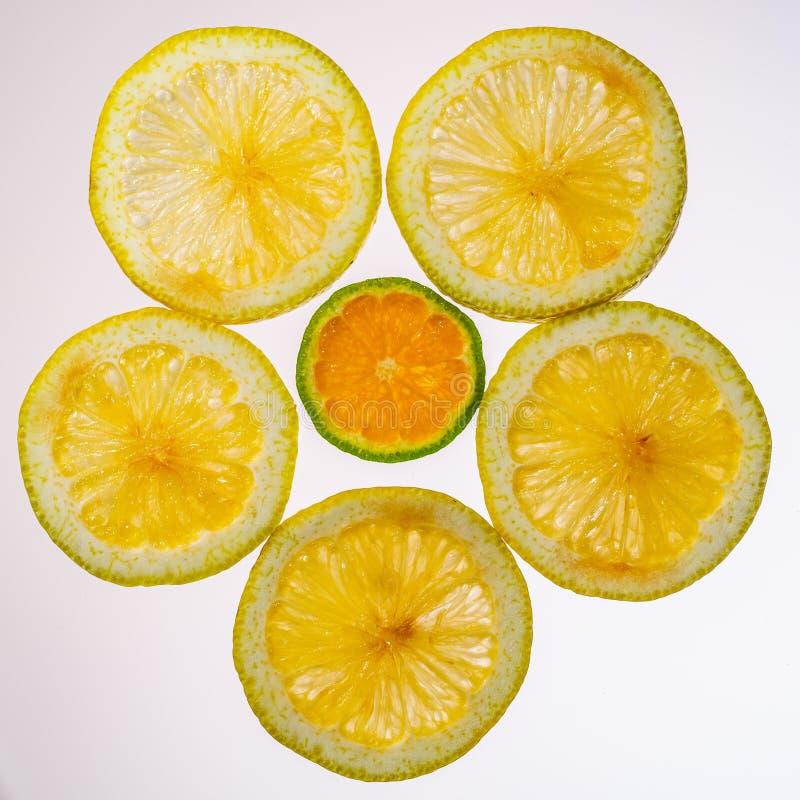 Color naranja en rodajas y mandarín en retroiluminación que muestra la textura imagen de archivo libre de regalías