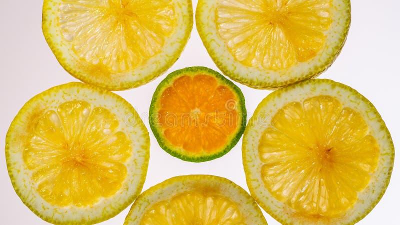 Color naranja en rodajas y mandarín en retroiluminación que muestra la textura fotos de archivo libres de regalías