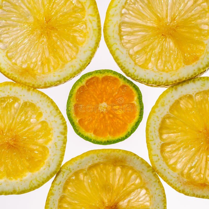 Color naranja en rodajas y mandarín en retroiluminación que muestra la textura fotografía de archivo