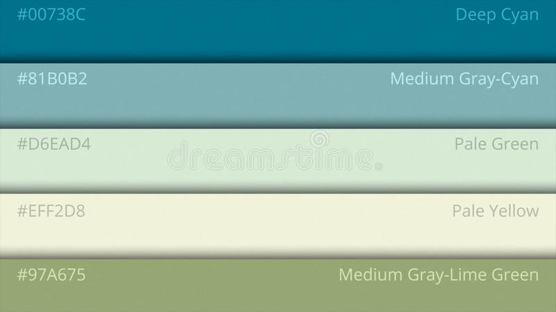 Color Palette Guide. Web colors. Sample Colors Catalog. selection of colors in web design HTML. Multicolored bright. Background. RGB. CMYK. Printing house. Web vector illustration