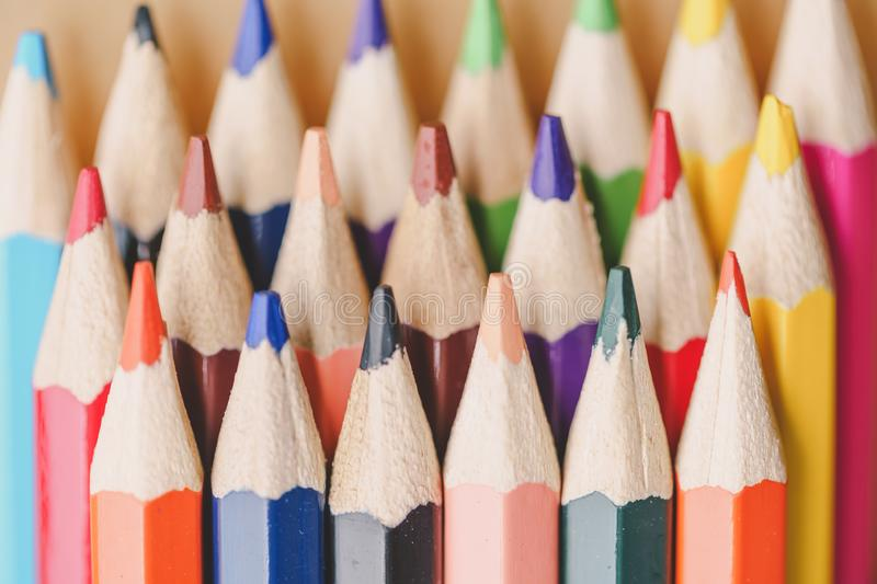 Color pencils on white background. royalty free stock photo
