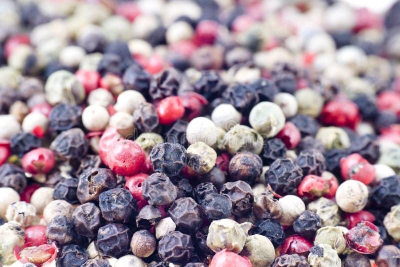 Color Peppercorns Stock Photos