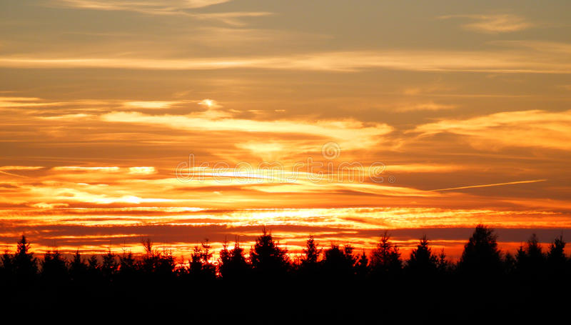 Color photography of beautiful sunset. Abstract color photography of beautiful sunset and trees silhouettes royalty free stock photography