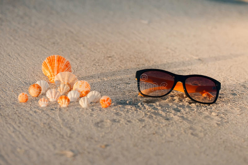 color Shells on sandy beach with yellow sunglasses stock photos
