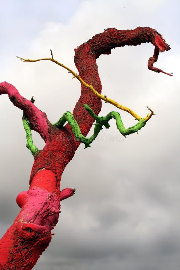 Color Tree. The color tree of Ibiza. Location San Josep de sa Talaia. Spain royalty free stock photo