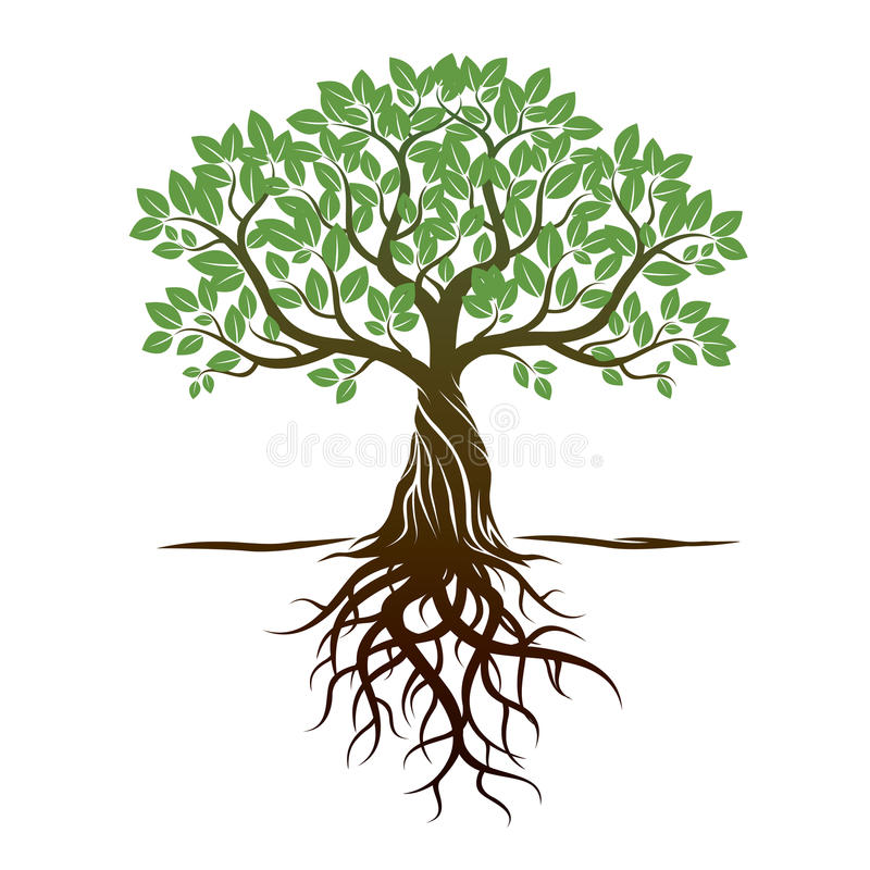 Download Color Tree And Roots. Vector Illustration. Stock Illustration - Illustration of leader, outdoor: 65691727
