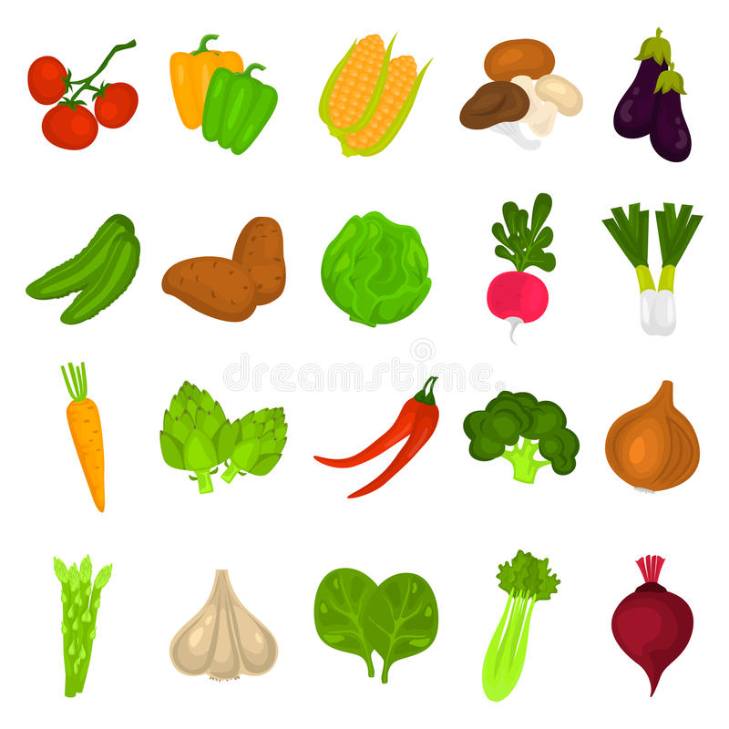 Color vegetables icons set for web and mobile design. Color vegetables icons set for web design stock illustration