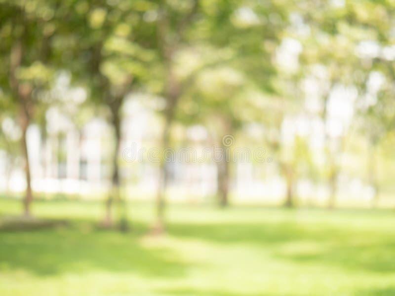 Color verde de la falta de definición abstracta en del jardín para el concepto del fondo, borroso y defocused del efecto de la pr fotografía de archivo libre de regalías