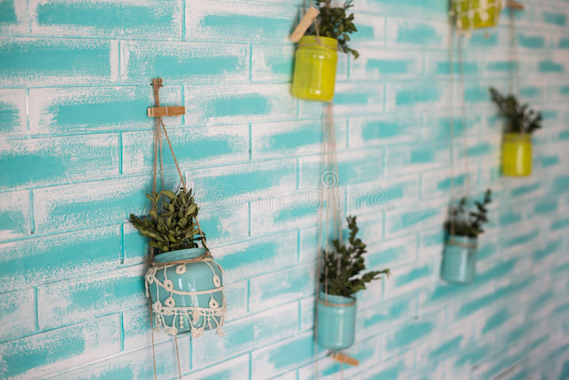 Color wall and flowerpots on it. Creative design royalty free stock photos