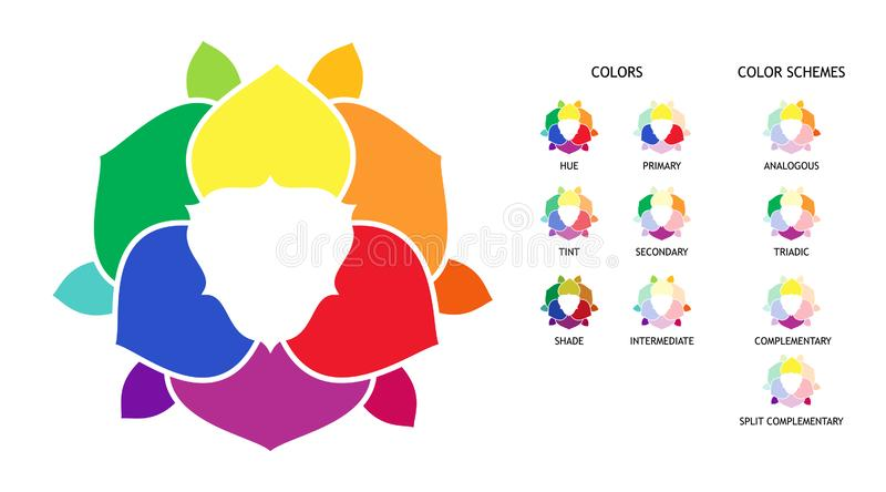 Color wheel with hue, tint, shades variations. Primary, secondary and supplementary color diagram. Color combinations schemes. Color wheel with hue, tint, shades stock illustration