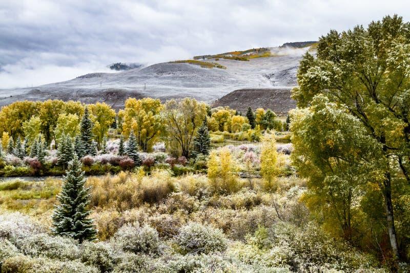 Color y nieve de la caída en Colorado imagen de archivo libre de regalías